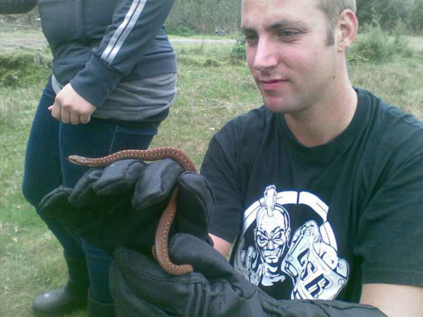 Adder Research